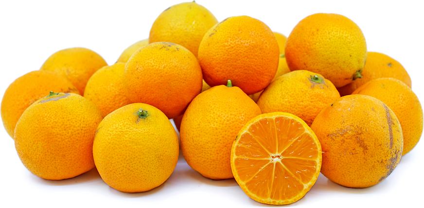 "Rangpur ""Kona"" Limes Information, Recipes and Facts"