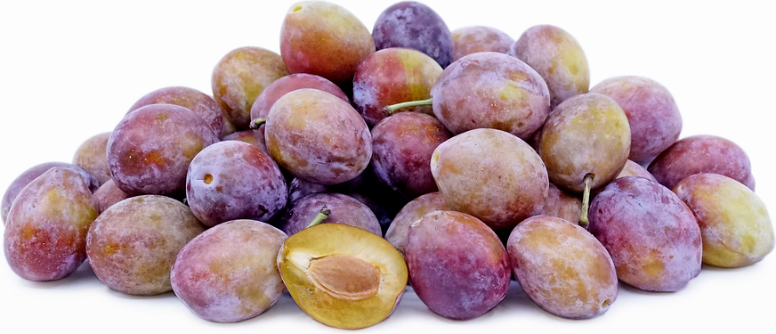 Sugar Plums Information, Recipes and Facts