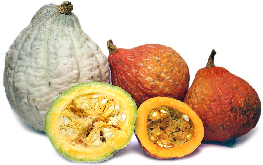 Hubbard Squash Information, Recipes and Facts