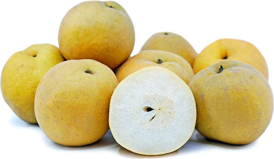 Shinko Asian Pears picture