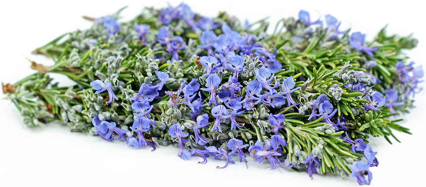 Rosemary Blossoms picture