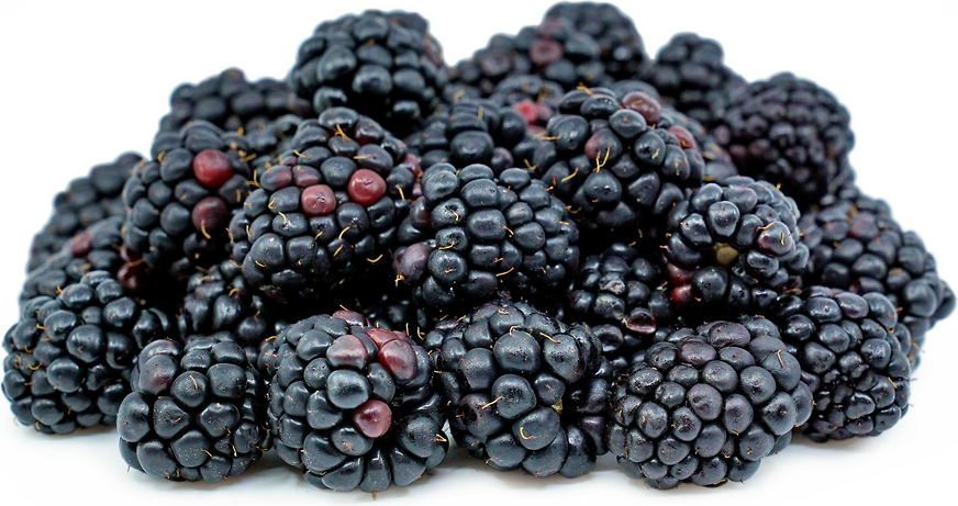 Blackberries Information, Recipes and Facts