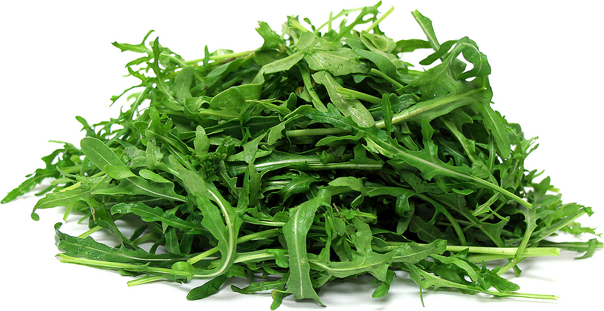 how to tell if arugula is bad