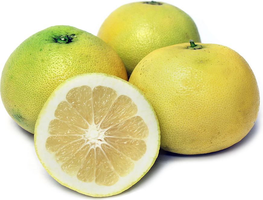 Oro Blanco Grapefruit picture