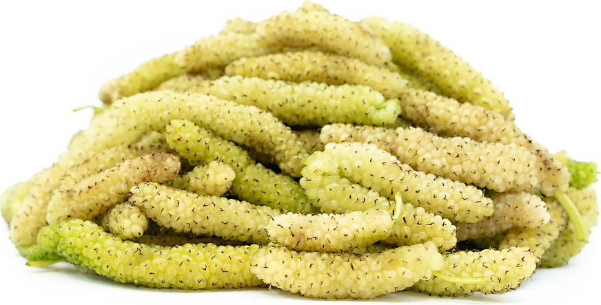 King White Mulberries