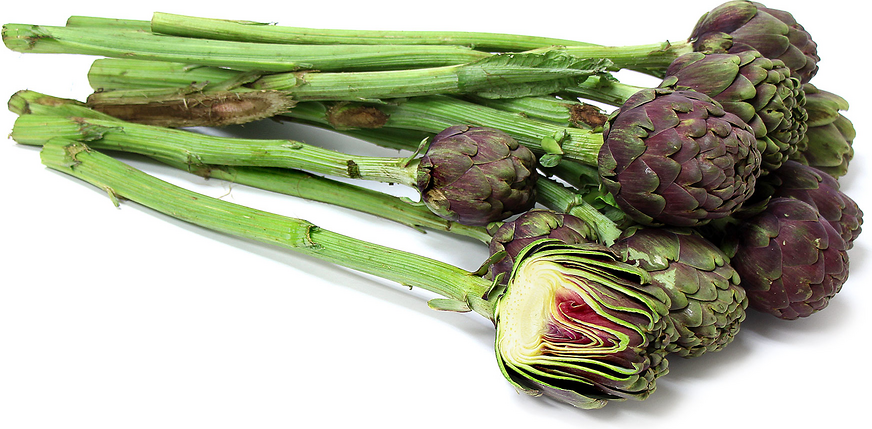 Long Stem Purple Artichokes picture