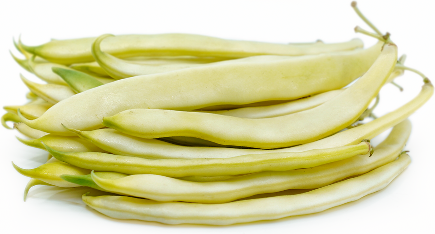 Yellow Romano Beans picture