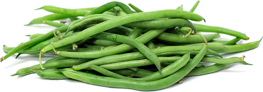 Blue Lake Beans picture