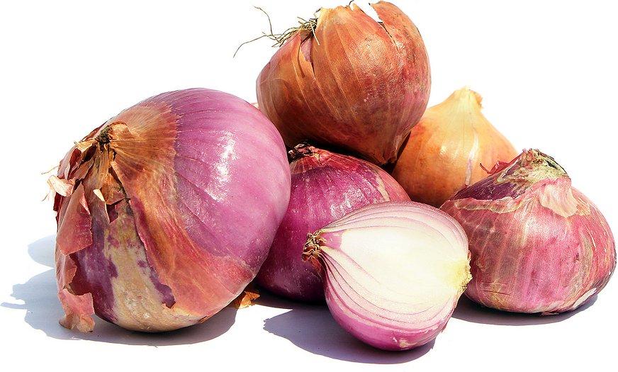 Pyaz Onions picture