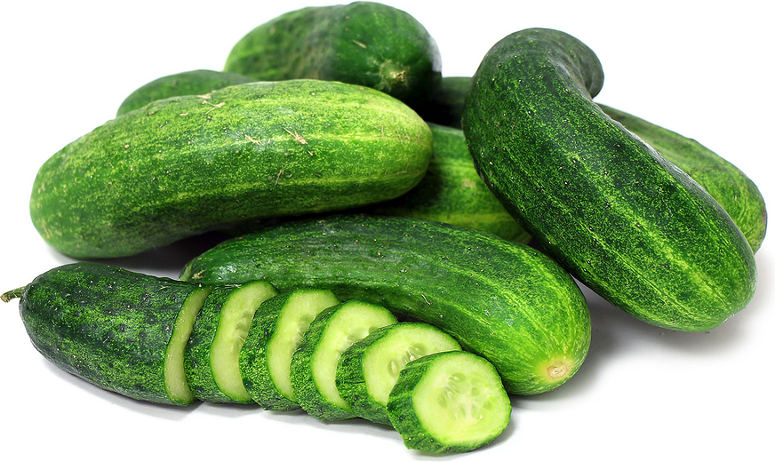 Pickling Cucumbers picture