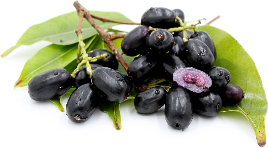 Jamun fruits for diabetes and diabetics