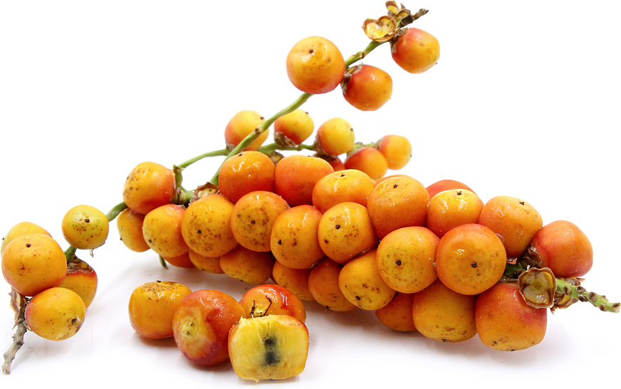 Jelly Palm Fruit Information Recipes And Facts