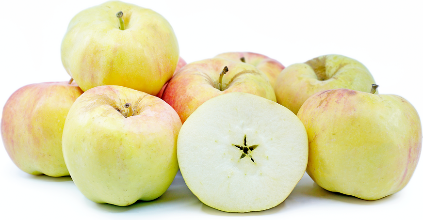 Golden Dorsett Apples