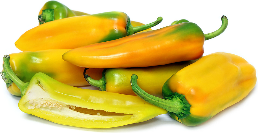 Golden Treasure Chile Peppers