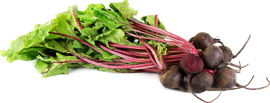 Bunched Red Beets picture