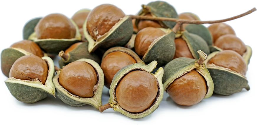 Green Macadamia Nuts