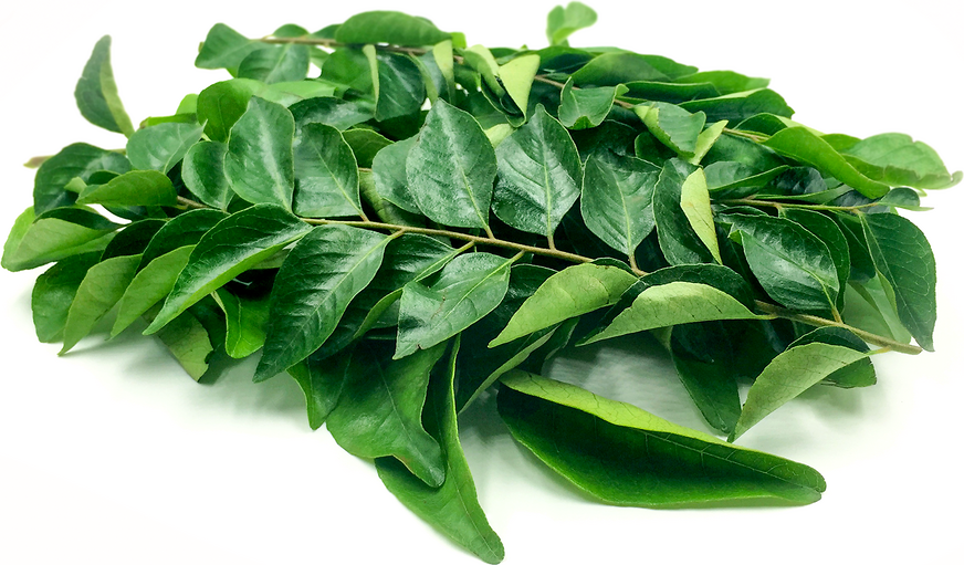 Curry Leaves picture