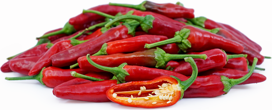Evans Hot Chile Peppers picture