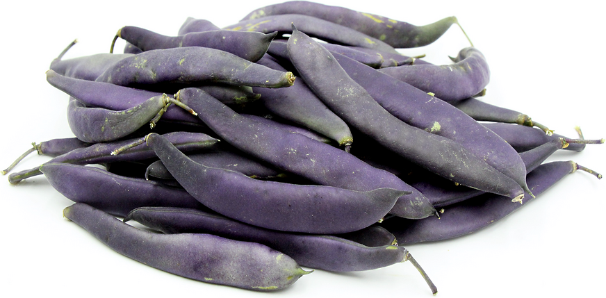 Purple Romano Beans picture