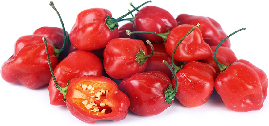 Red Habanero Chile Peppers picture
