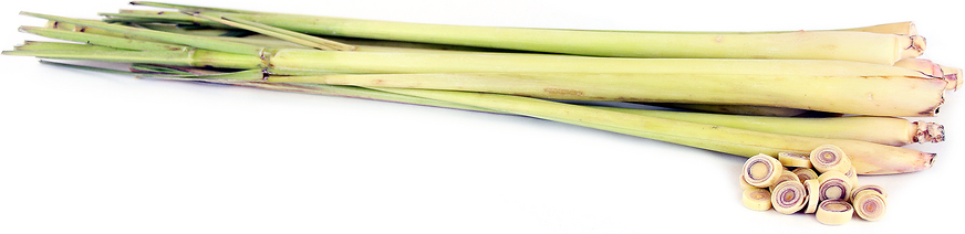 Organic Lemongrass picture