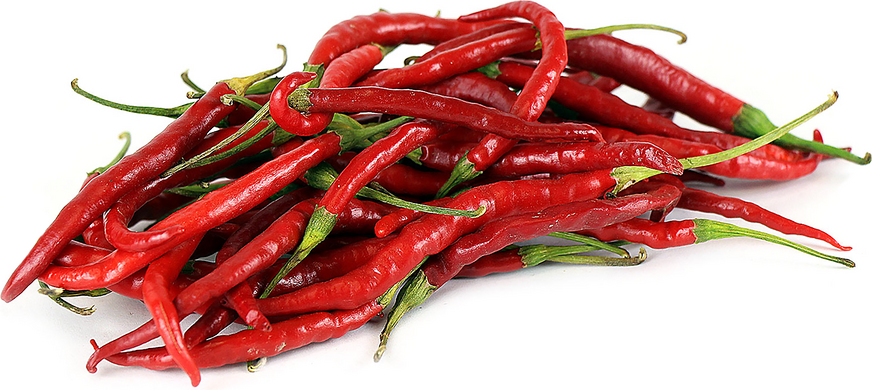 Red Arbol Chile Peppers