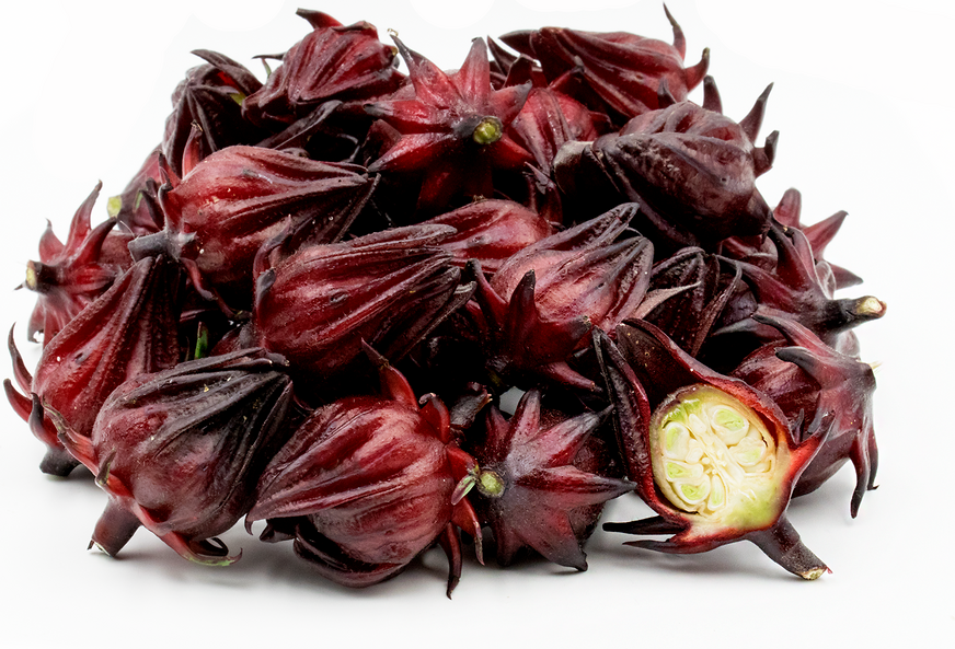 Roselle Flowers Information, Recipes and Facts