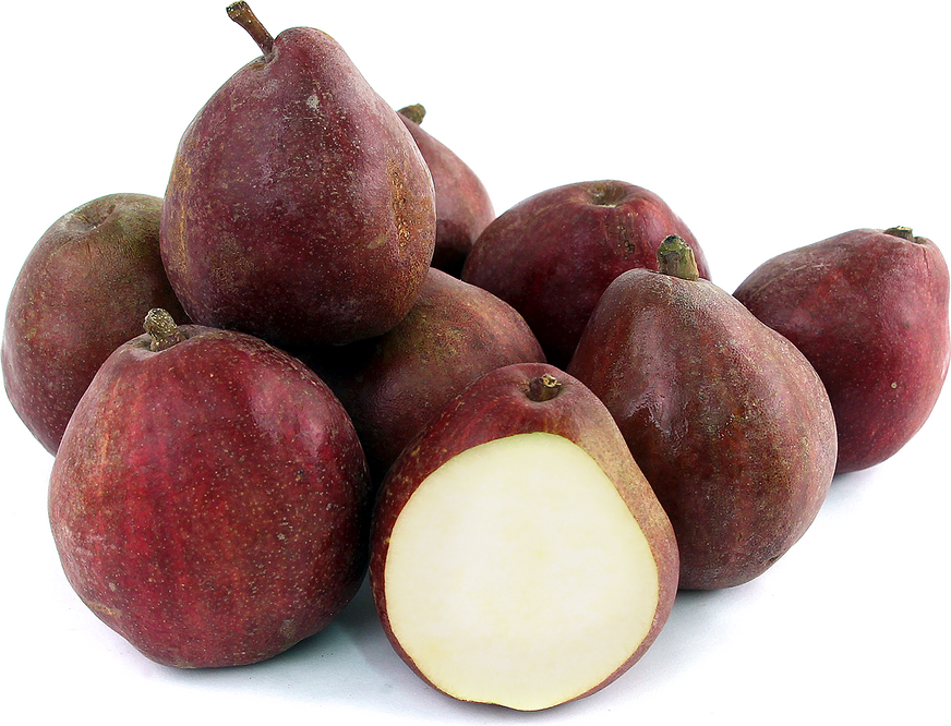 Red Anjou  Pears picture