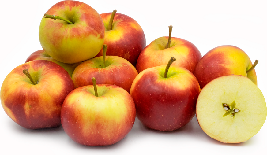 Elstar Apples