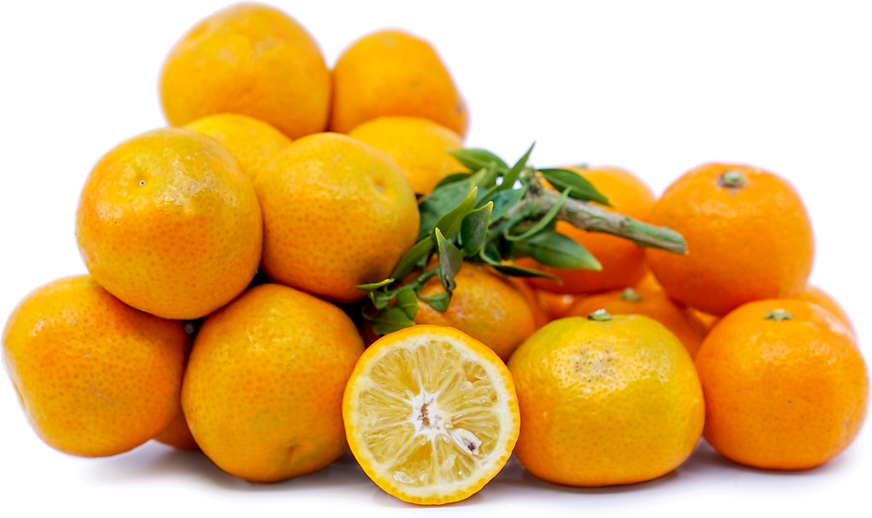 Chinotto Oranges picture