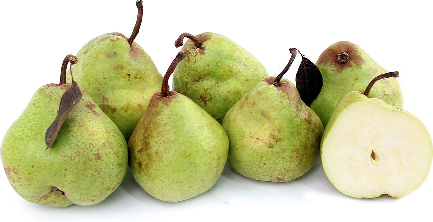 Green Anjou Pears picture