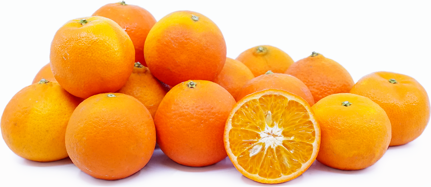 Fremont Tangerines picture
