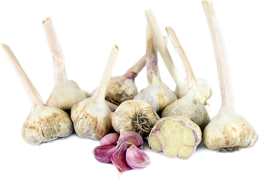 Applegate Garlic