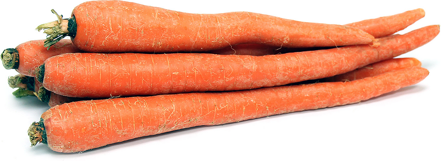 Organic Table Carrots picture