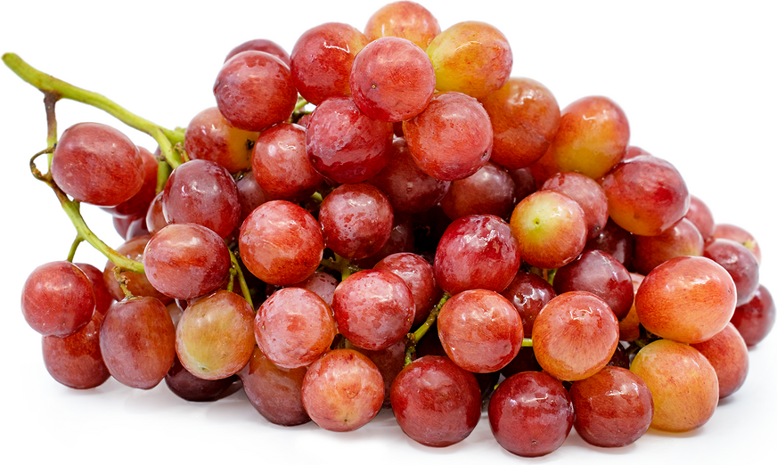 Seedless Grapes Red