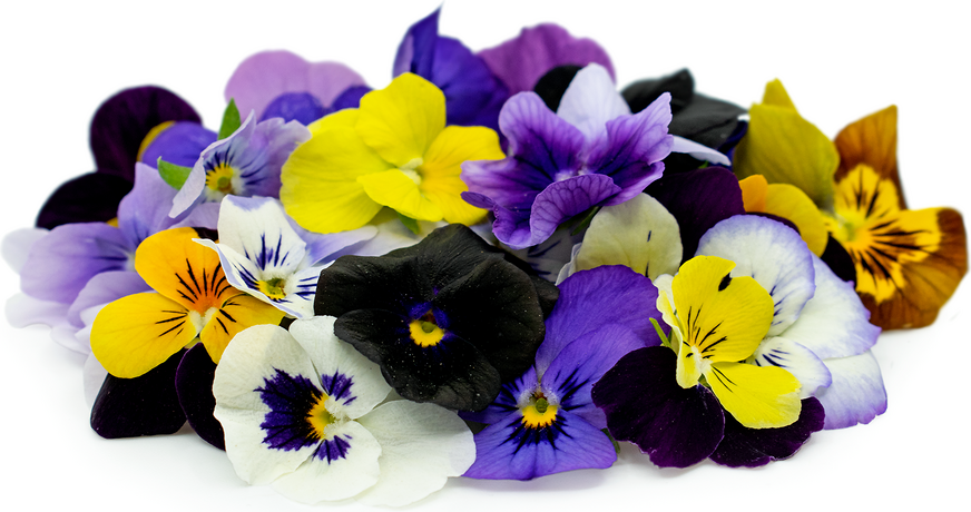 Viola Flowers picture