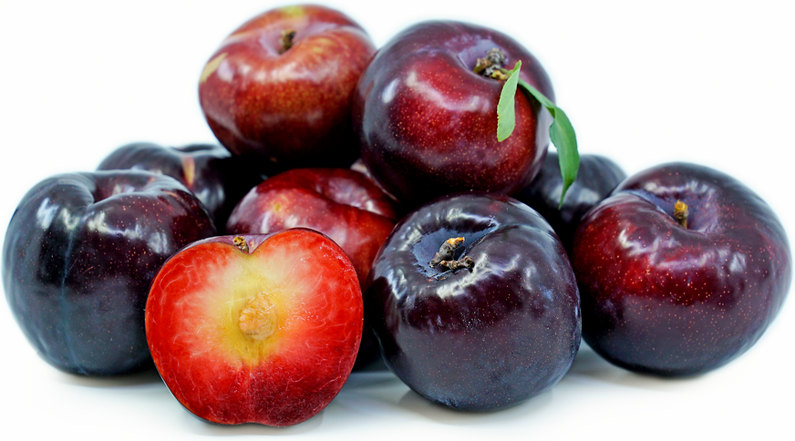 Black Splendor Plums Information and Facts