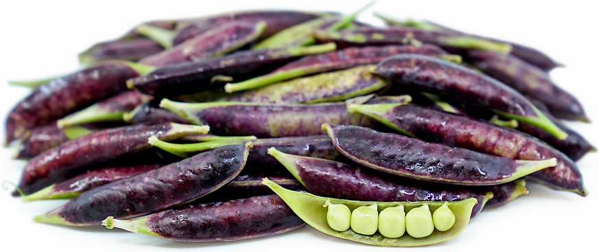 Purple Sugar Snap Peas picture