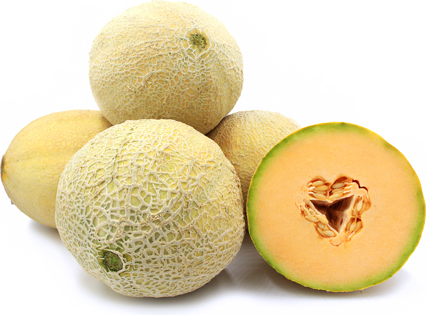 Cantaloupe During Pregnancy – Is it safe to eat cantaloupe during pregnancy: