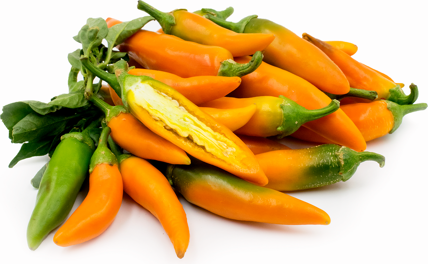 Bulgarian Carrot Chile Peppers