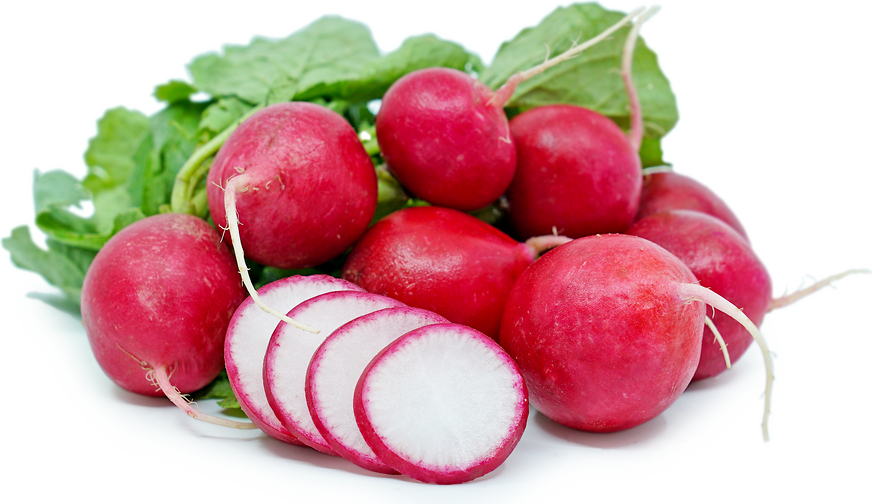 Red Radish Information, Recipes and Facts