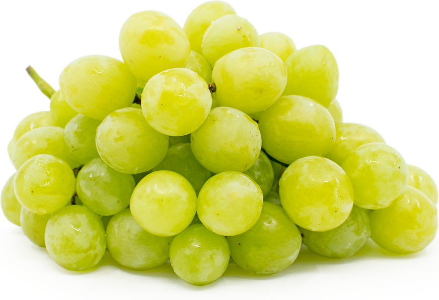 Valley Pearl Grapes
