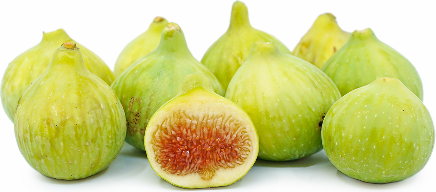 White Figs Information And Facts