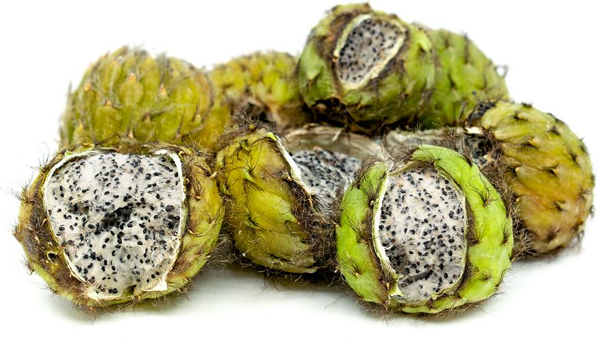 asian fruit cactus fruit
