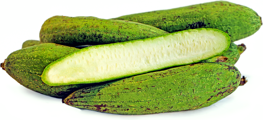 Sponge Gourd picture