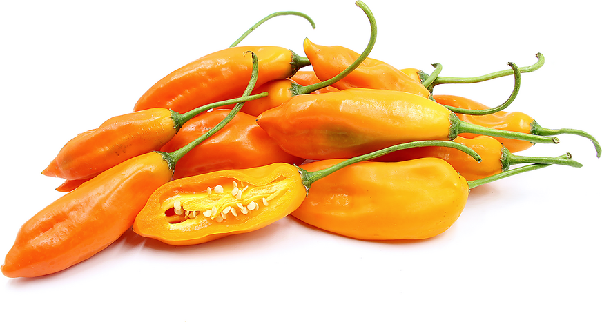 Aji Amarillo Peruano Chile Peppers picture