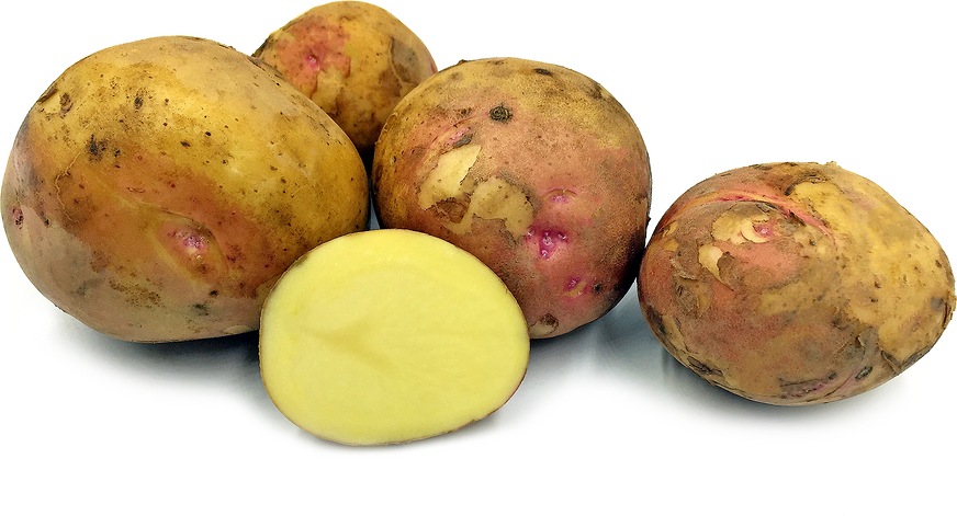 Prairie Blush Potatoes