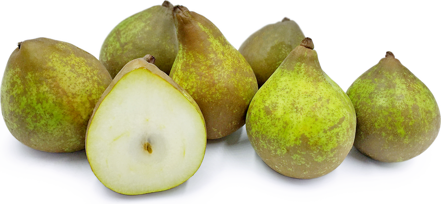 Bella Lucrative Pears picture