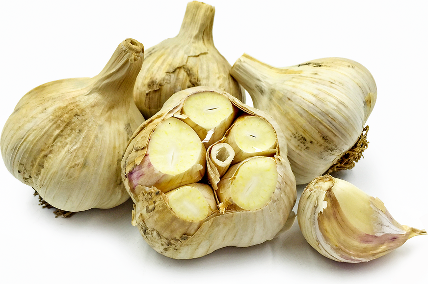 German White Garlic