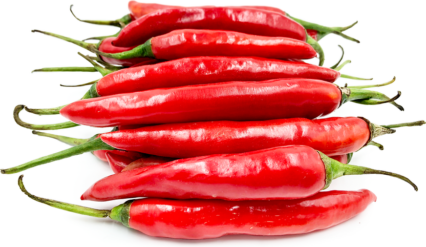 Red Chile Peppers picture